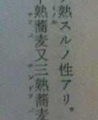 090328_1636~01長英文章.JPG